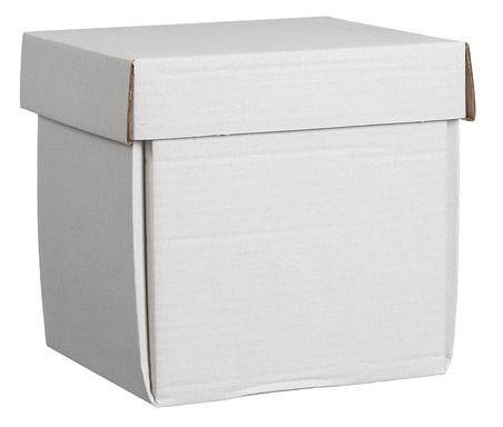 askkartong urna vid minneslund